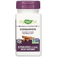 Экстракт корицы, Cinnamon, Nature's Way, 60 капсул
