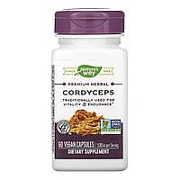 Лечебные грибы кордицепс (Cordyceps), Nature's Way, 60 кап.