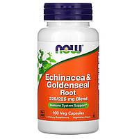 Эхинацея (Echinacea), Now Foods, 100 капсул