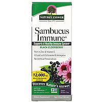 Черная бузина, Sambucus Immune, Nature's Answer, 120 мл