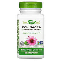 Эхинацея (Echinacea), Nature's Way, 400 мг, 180 капсул