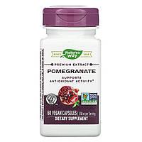 Гранат, Pomegranate, Standardized, Nature's Way, 60 капсул