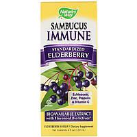 Черная бузина, био, Sambucus Immune, Nature's Way, 120 мл