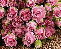 Картина рисование по номерам BrushMe Букет розовых роз BRM34269 40х50 см Цветы, букеты, натюрморты набор для, фото 1