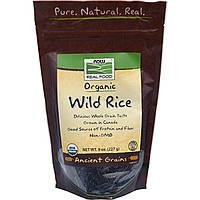 Органический дикий рис, Now Foods, 227 г