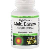 Мульти Ензими, Multi Enzyme High Potency, Natural Factors, 120 капсул