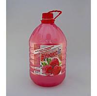 Жидкое мыло Блюксис 5л 015210 (0152100(малина) x 38544), фото 1