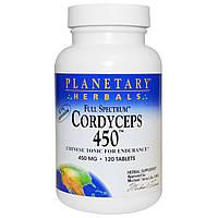 Кордицепс китайский (Cordyceps), Planetary Herbals, 120 табл.