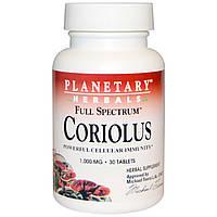 Planetary Herbals, Кориолус повного спектру, 1000 мг, 30 таблеток