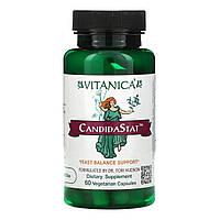 Vitanica, CandidaStat для поддержки баланса дрожжей,  60 капсул на растительной основе