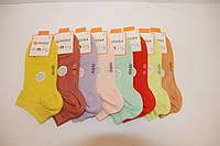 Женские носки короткие с модала DUNDAR  пастель ассорти