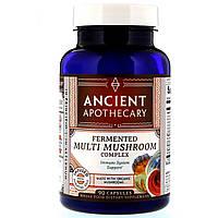Ancient Apothecary, Fermented Multi Mushroom Complex, 90 Capsules