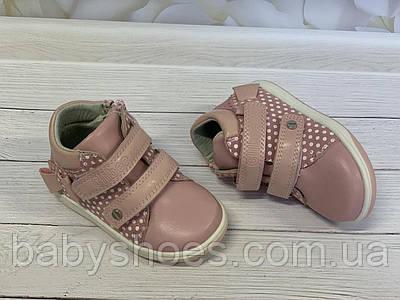 Демисезонные ботинки для девочки,Clibee, Польша. р.20-25,  ДД-93