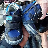 Детская обувь.Ботинки деми на липучках для мальчика, хайтопы 21,22,23,24