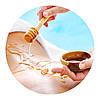 Медово-баночный массаж (медовый массаж + вакуумный массаж от целлюлита)
