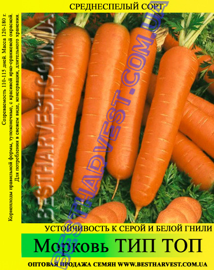 Семена моркови Тип Топ 1 кг