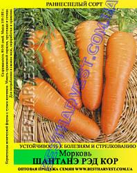 Насіння моркви «Шантане Ред Кор» 100 г