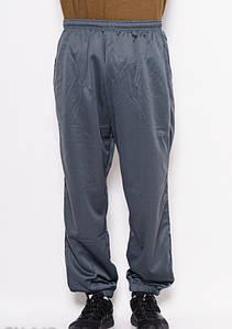Спортивные штаны ISSA PLUS GN-267 M серый