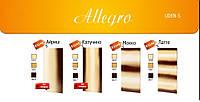 Дизайн радиатор UDEN-S 700 Allegro стандарт