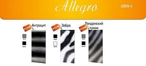 Дизайн радиатор UDEN-S 700 Allegro стандарт, фото 2