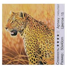"""Картина по номерам + Алмазная мозаика """"Леопард"""" 75507"""