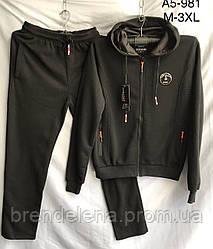 Спортивный костюм мужской Флис черный (.m-2xl)