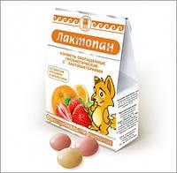 Конфеты молочные обогащенные Лактопан (нормализует микрофлору желудочно-кишечного тракта)