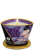 Массажная свеча экзотические фрукты Shunga Massage Candle Exotic Fruits 170 ml