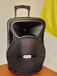 Акустична система з двома радіомікрофонами LiGE-AJ15DKS 15 дюймів Супер звук!, фото 2