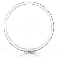 Лампа кольцевая PHILIPS TL 5C 40W/830 2GX13 (Китай)
