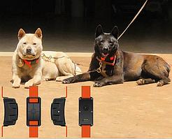 Gps-трекер для охотничих собак S9  водонепроницаемый ударопрочный