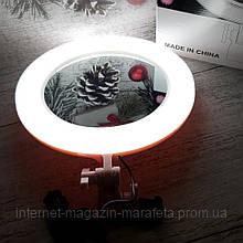 Кольцевая LED лампа Ra-95 + зеркало (26см) (30)