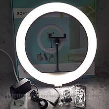 Кольцевая LED лампа YQ350A (34см) (20) от сети