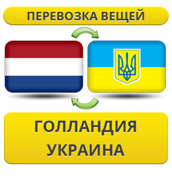 293567411_w640_h640_1.8_gollandiya__usluga_rus.jpg