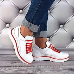 Женские кроссовки на шнуровке кожаные, белые  V 1286