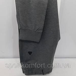 Жіночі спортивні трикотажні штани Soccer сірий меланж внизу манжет