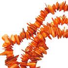 Сколы Ракушки Оранжевые с Перламутром, Размер 4-6*2-3 мм, Около 78 см нить, Бусины для Бижутерии, Фурнитура, фото 3
