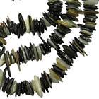 Сколы Ракушки Светло Черно-Белого цвета с Перламутром, Размер 4-8*1-3 мм, Около 80 см нить, Бусины, фото 5