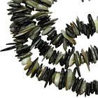 Сколы Ракушки Светло Черно-Белого цвета с Перламутром, Размер 4-8*1-3 мм, Около 80 см нить, Бусины, фото 6