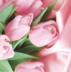 Подарунковий паперовий пакет КВАДРАТ 24*24*10 см Тюльпани