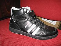Кросівки Restime PW6173