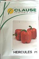 Семена перца ГЕРКУЛЕС F1, 5 гр., фото 1