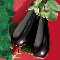 ЕПІК F1 - насіння баклажана, Seminis