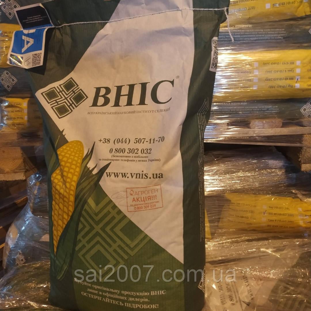 Семена кукурузы ВН 63   гибрид- оригинатор ВНИС