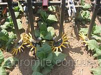 Рабочий орган пальцевого культиватора с консолью, фото 4