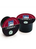 Кофе в капсулах Lavazza Tierra 100 шт