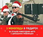 Акция! Конкурс на лучшее Новогоднее Фото домашнего любимца!!!!