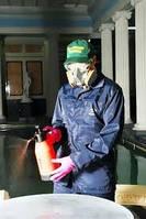 Уничтожение насекомых, грызунов - дезинсекция, дератизация