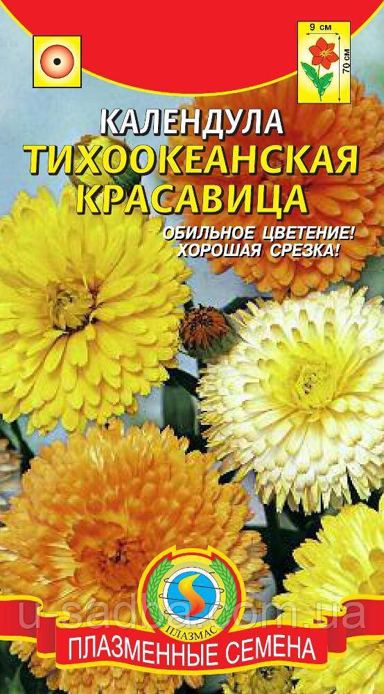 Семена цветов Календула Тихоокеанская красавица 0,4 г смесь (Плазменные семена)