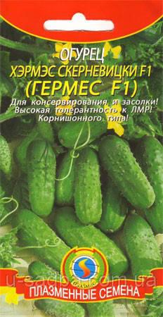 Насіння огірків Огірок Хэрмэс Скерневицки F1 12 штук (Плазмові насіння)
